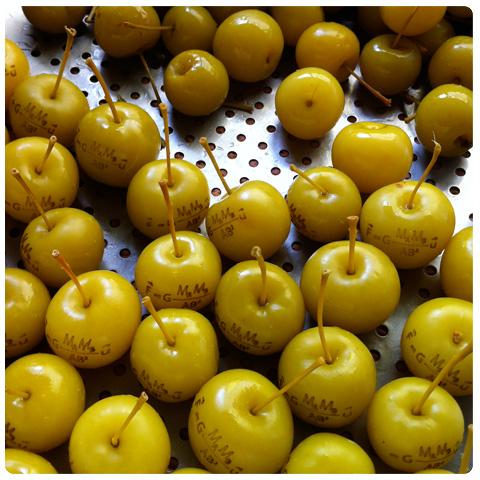 pommes gravées