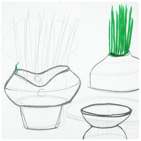 dessins du jardin